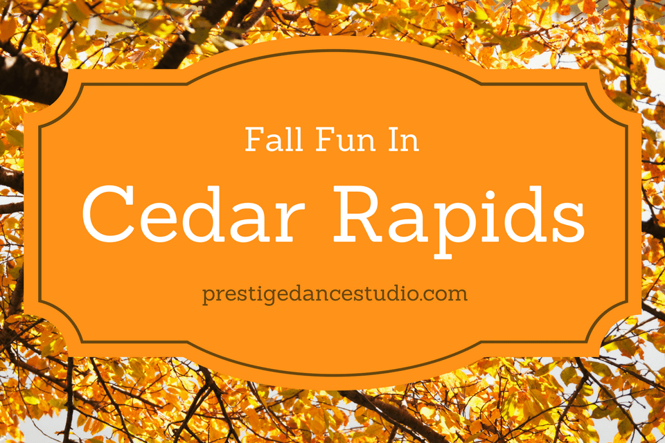 Great ideas for fall fun for families in the Cedar Rapids area!